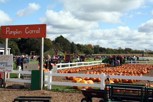 They. Gull Meadow Farms   Fall Fun   This Michigan Life