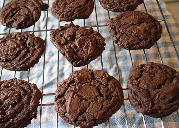 chocolatecookies