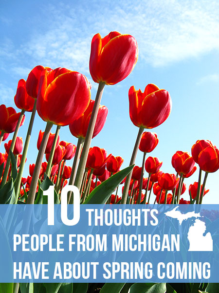 Michigan_Thoughts_Spring