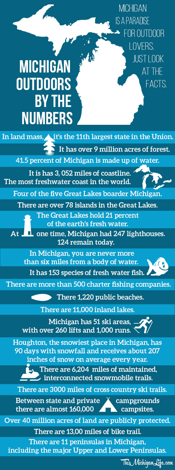 michigan-infographic