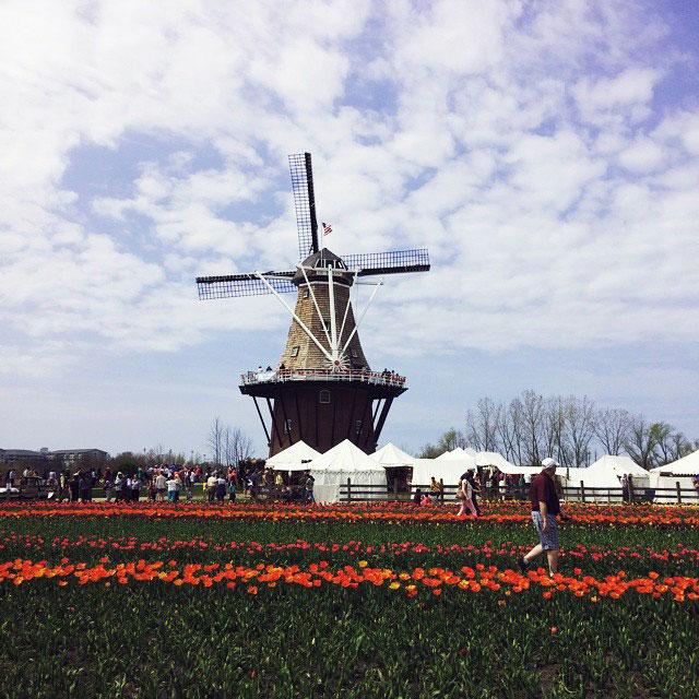 WindmillIsland